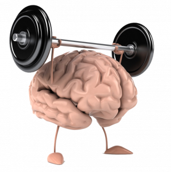 nº 6 Brain fitness